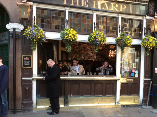 The Harp : Thumbs up from the sister!