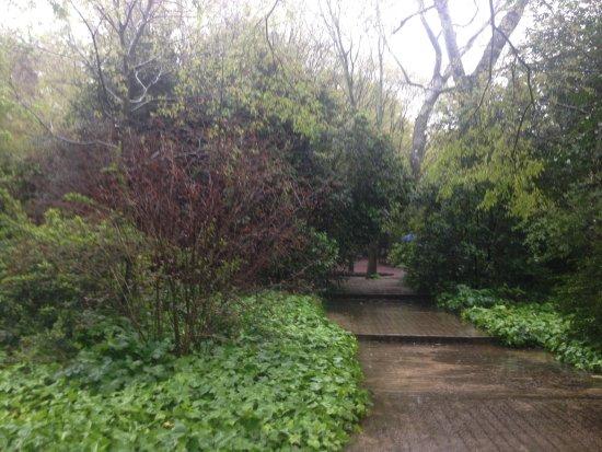 Museo Calouste Gulbenkian: Jardin exterior hacia el museo de Arte Moderno