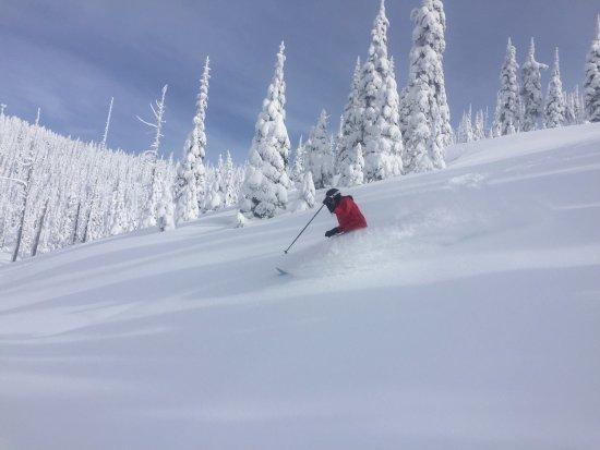 Sandpoint, ID: Selkirk Powder Cat Skiing