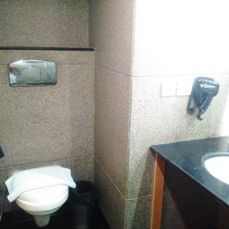Hotel Saffron Kiran: IMG-20170331-WA0003_large.jpg