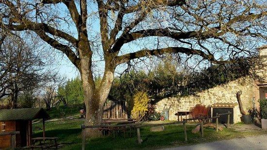 Agriturismo Il Felcino: un angolo accanto al ristorante e i mini appartamenti, la piscina, l'altalena, il verde, il rela