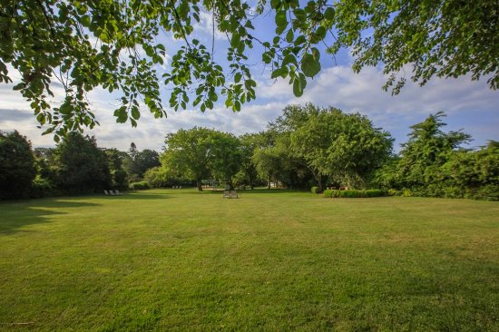 Gansett Green Manor: our tranquil back field