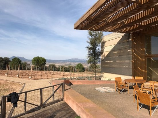 Beautiful views and modern building above picture of - Bodegas campo viejo ...