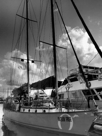 Ocean Free and Ocean Freedom: Boat