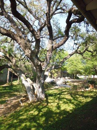 T Bar M Camps & Retreats Resmi