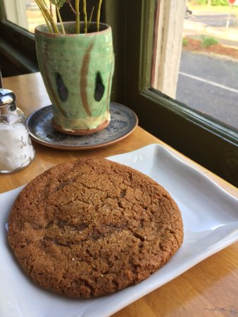 Athens, GA: Molasses Ginger cookie