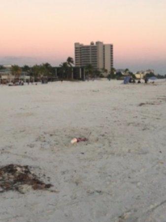 DiamondHead Beach Resort: FROM the beach. walking back from the pier area