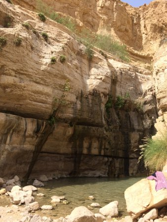 Dead Sea Region Photo