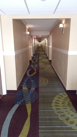 Staunton, Βιρτζίνια: The 5th floor corridor.