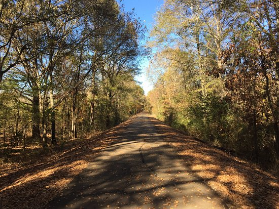 New Albany, MS: Warm day in October 2016 biking the Tanglefoot Trail