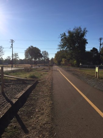 New Albany, MS: Biking the Tanglefoot Trail in Mississippi in October 2016