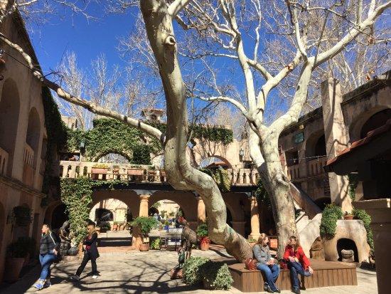 Tlaquepaque Arts & Crafts Village: Mature tree in central courtyard.