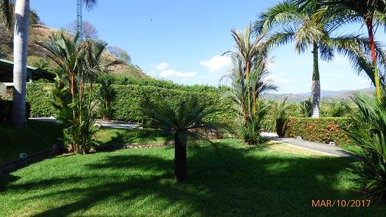 Nandayure, Costa Rica: Áreas verdes del hotel.