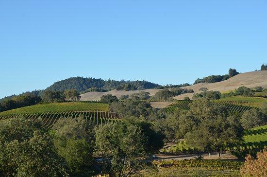 Healdsburg, CA: Christopher Creek Winery