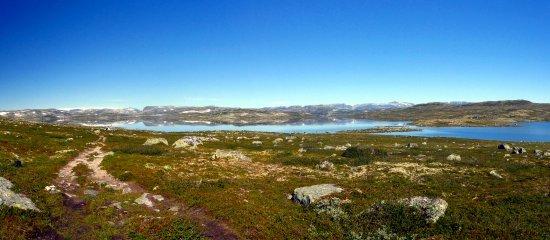 hardanger Vidda Plateau Hardanger National Park
