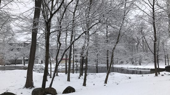 Park Ridge, NJ: The last day of my visit was a late winter snowfall - very picturesque!