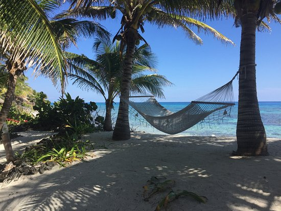 Off The Wall Dive Center & Resort: Life doesn't get much better than this
