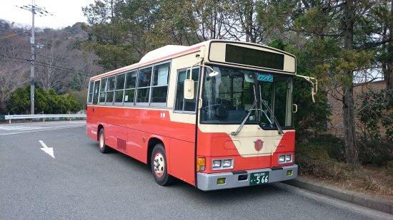 Wakayama Bus