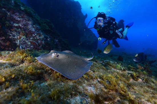Atlantis Divers: photo0.jpg