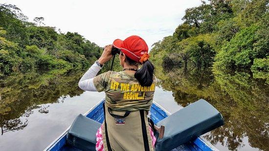 Amazonia Expeditions' Tahuayo Lodge: Birdwatching in the Tahuayo