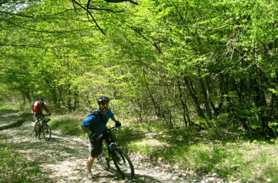Private Cycling Tour in Rkoni from...