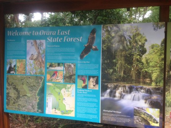 Korora, Australia: Sign