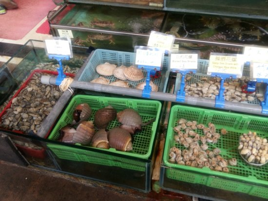 Lamma Mandarin Seafood: Some of the Live Sea food on offer