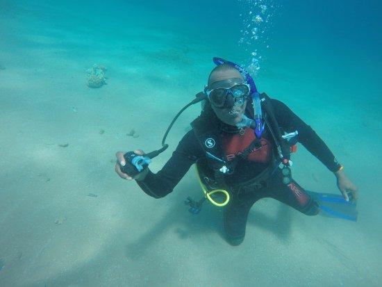 写真Dahab Divers South Sinai Hotel & Dive center枚