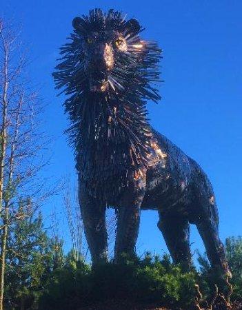 Aslan, the Lion - Picture of C S  Lewis Square, Belfast - TripAdvisor