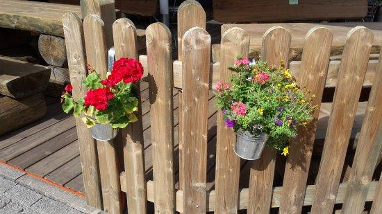 Olsberg, Germany: Wir lieben unsere Blumen!
