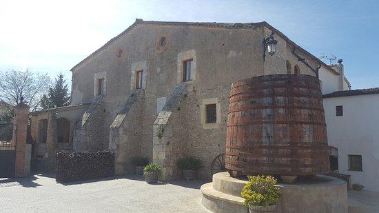 Suriol del Castell  de Grabuac
