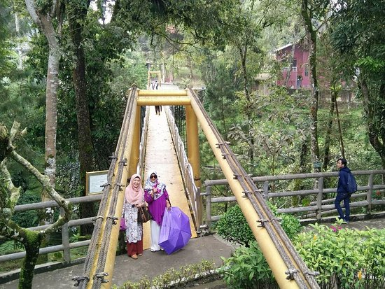 Brastagi, Indonesia: Jembatan gantung