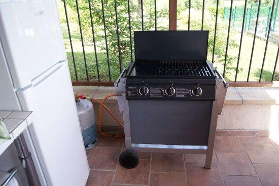 Barbecue Électrique À La Cuisine D'Été - Picture Of Les Eyrials