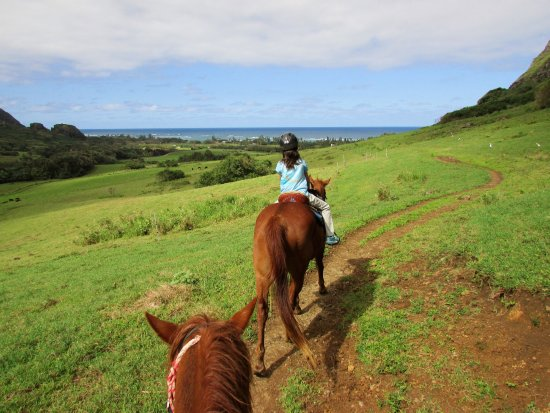 Kaneohe, ฮาวาย: Ocean views during the Kualoa Ranch 2 hour trail ride