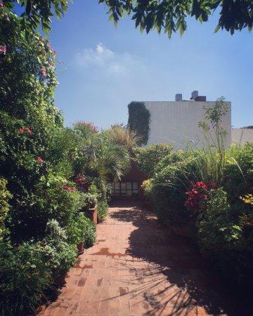 Be Jardín Escondido by Coppola: Garden veranda with view of studio window