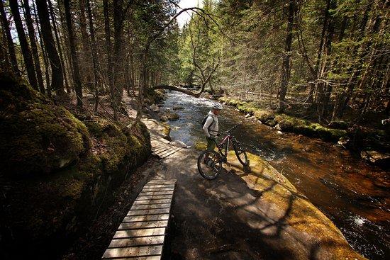 Saint-Raymond, Canada: Vélo de montagne (Shannahan)