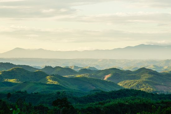 Dak Nong Province, Vietnam: The waving mountainous in Daknong province is stunning and you have to find it exactly timing.