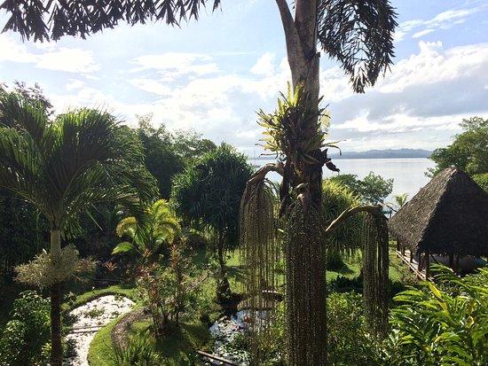 Isla San Cristobal, Panama: photo5.jpg