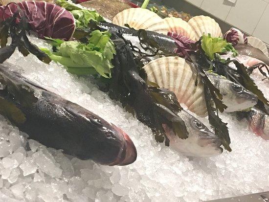 Magnifico pescado a la sal, mejillones, y postre!