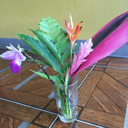 Arenal Country Inn: Bouquet