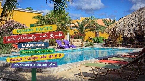 Djambo: pool and pool deck