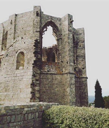 Gigean, Francia: Abbaye de st Félix de montceau