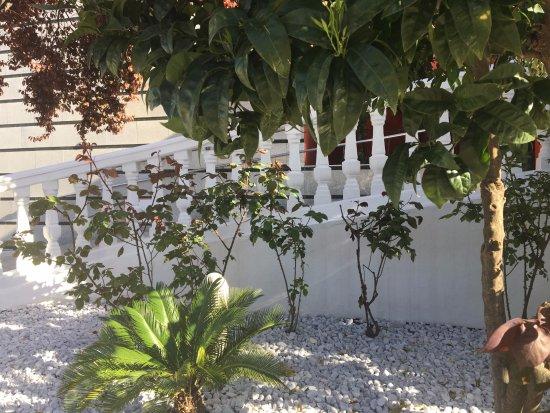 nuevos jardines exteriores hotel torres i