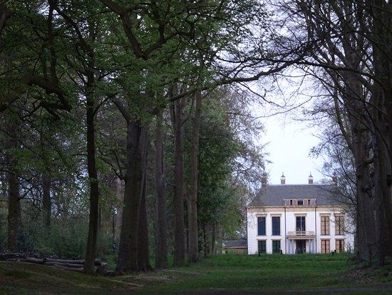 nijenburg;bos van Heiloo