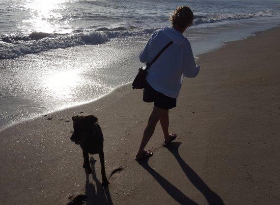 Jensen Beach, Floryda: Dog Mom