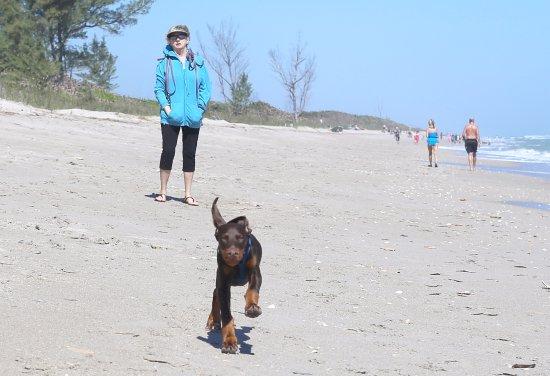 Jensen Beach, FL: Run Xena Run