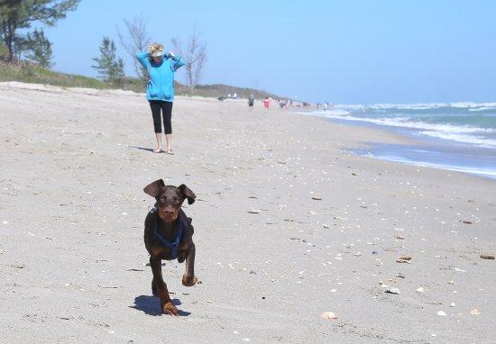 Jensen Beach, Flórida: Run Xena Run