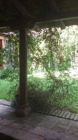 Hotel Entre Viñas : Vista desde uno de los comedores