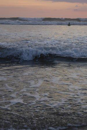 Safari Surf School: Waves Coming in!