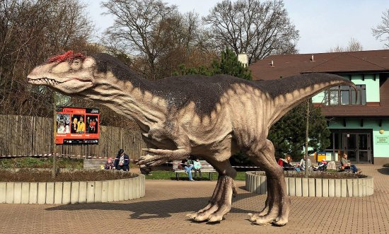 Allosaurus in the front of ZOO&DinoPark Bratislava